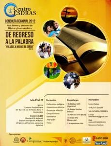 Afiche consulta 2012